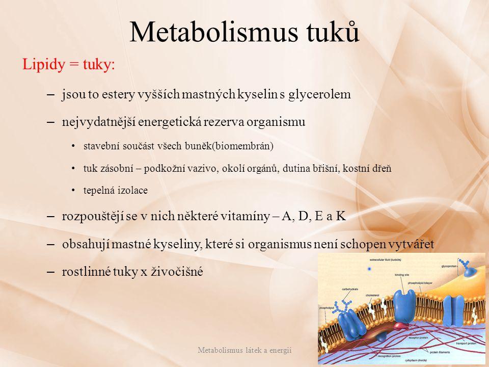 Metabolismus tuků Lipidy = tuky: – jsou to estery vyšších mastných kyselin s glycerolem – nejvydatnější energetická rezerva organismu stavební součást