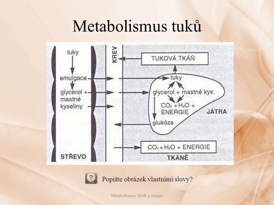 Metabolismus tuků Metabolismus látek a energií14 Popište obrázek vlastními slovy?