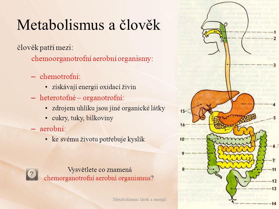 Metabolismus a člověk člověk patří mezi: chemoorganotrofní aerobní organismy: – chemotrofní: získávají energii oxidací živin – heterotofné – organotro