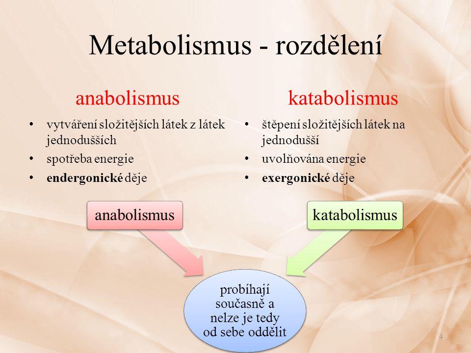 Metabolismus - rozdělení anabolismus vytváření složitějších látek z látek jednodušších spotřeba energie endergonické děje katabolismus štěpení složitějších látek na jednodušší uvolňována energie exergonické děje 4 probíhají současně a nelze je tedy od sebe oddělit anabolismuskatabolismus