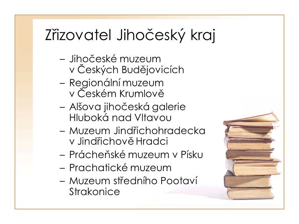 Zřizovatel obec nebo město –Blatná –Dačice –Milevsko –Vodňany –Týn nad Vltavou