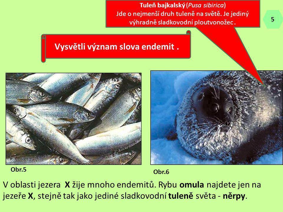 V oblasti jezera X žije mnoho endemitů. Rybu omula najdete jen na jezeře X, stejně tak jako jediné sladkovodní tuleně světa - něrpy. Vysvětli význam s