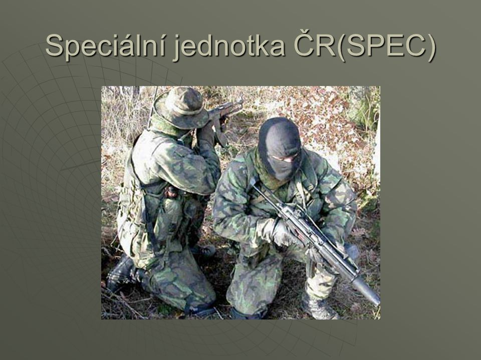 vojáci  odstřelovač  Pomůcky odstřelovače:  Odstřelovací puška  Maskovací síť  pistol ráže 9 mm  Čistící pomůcky