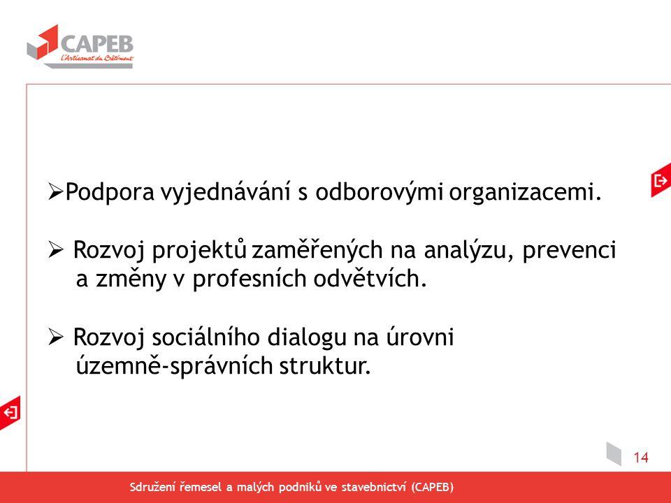 Sdružení řemesel a malých podniků ve stavebnictví (CAPEB) 14  Podpora vyjednávání s odborovými organizacemi.  Rozvoj projektů zaměřených na analýzu,