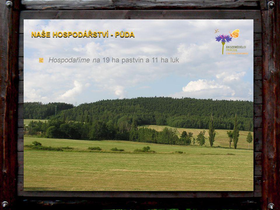 Hospodaříme na 19 ha pastvin a 11 ha luk NAŠE HOSPODÁŘSTVÍ - PŮDA