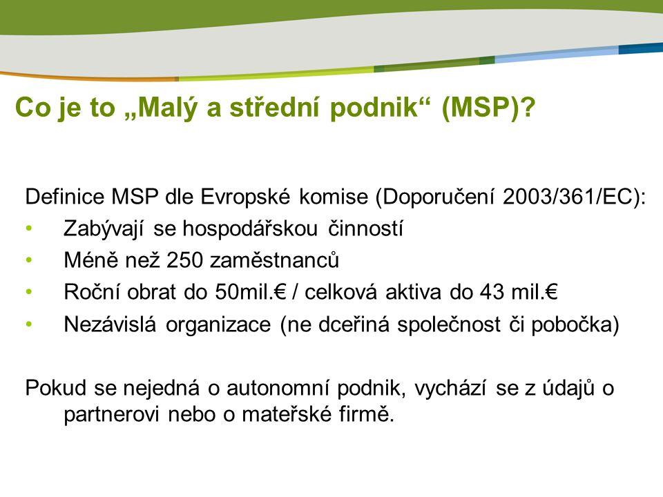 """Co je to """"Malý a střední podnik (MSP)."""