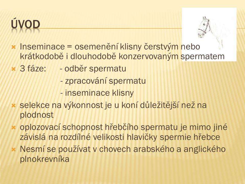  Inseminace = osemenění klisny čerstvým nebo krátkodobě i dlouhodobě konzervovaným spermatem  3 fáze: - odběr spermatu - zpracování spermatu - insem