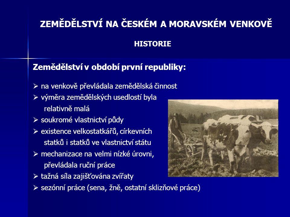 ZEMĚDĚLSTVÍ NA ČESKÉM A MORAVSKÉM VENKOVĚ HISTORIE Zemědělství v období první republiky:  na venkově převládala zemědělská činnost  výměra zemědělsk