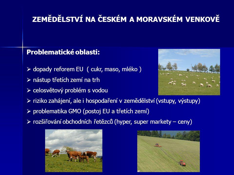 ZEMĚDĚLSTVÍ NA ČESKÉM A MORAVSKÉM VENKOVĚ Problematické oblasti:  dopady reforem EU ( cukr, maso, mléko )  nástup třetích zemí na trh  celosvětový