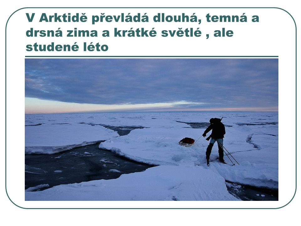 V Arktidě převládá dlouhá, temná a drsná zima a krátké světlé, ale studené léto