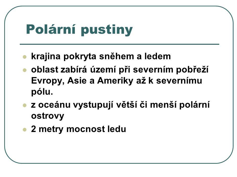 Polární pustiny krajina pokryta sněhem a ledem oblast zabírá území při severním pobřeží Evropy, Asie a Ameriky až k severnímu pólu.