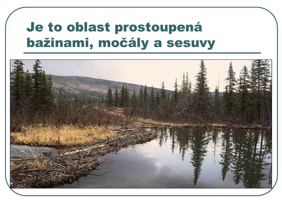 Je to oblast prostoupená bažinami, močály a sesuvy
