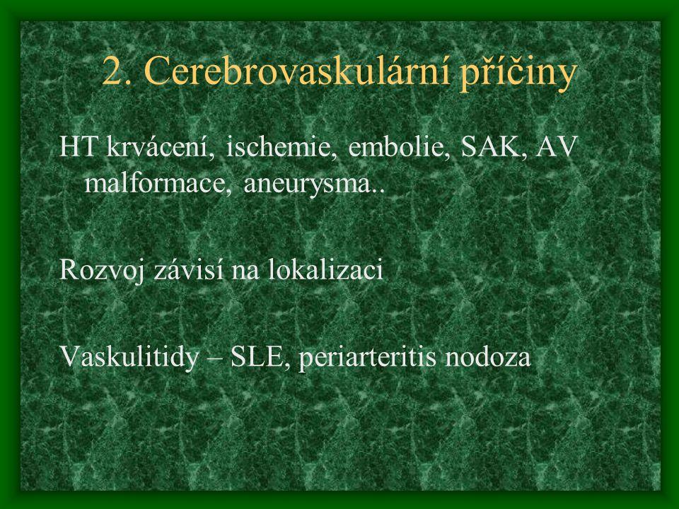 2. Cerebrovaskulární příčiny HT krvácení, ischemie, embolie, SAK, AV malformace, aneurysma.. Rozvoj závisí na lokalizaci Vaskulitidy – SLE, periarteri