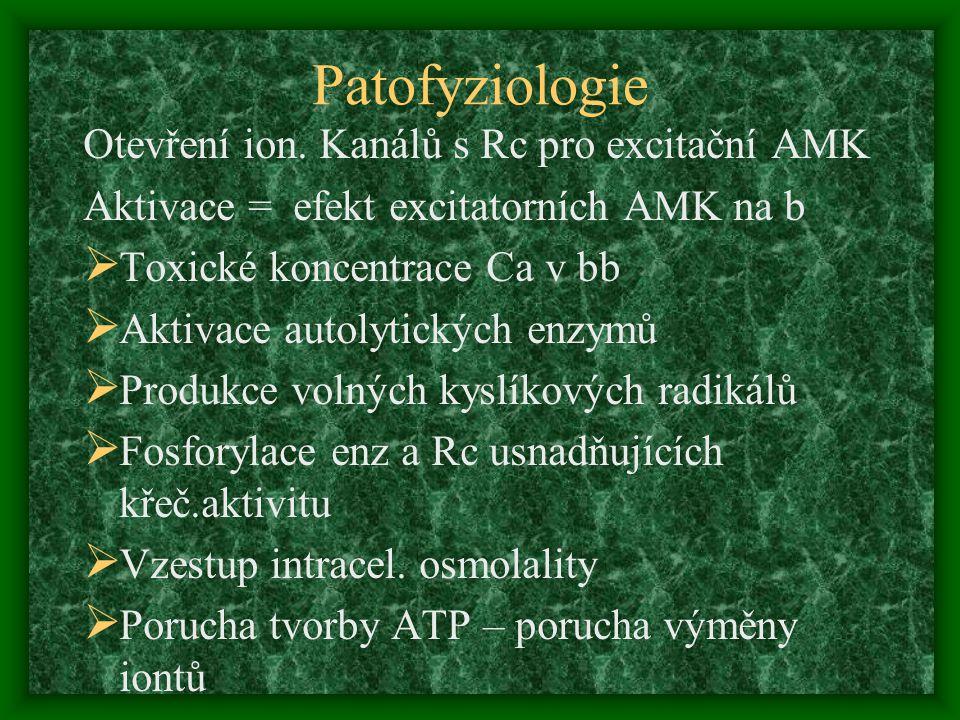 Patofyziologie Otevření ion. Kanálů s Rc pro excitační AMK Aktivace = efekt excitatorních AMK na b  Toxické koncentrace Ca v bb  Aktivace autolytick