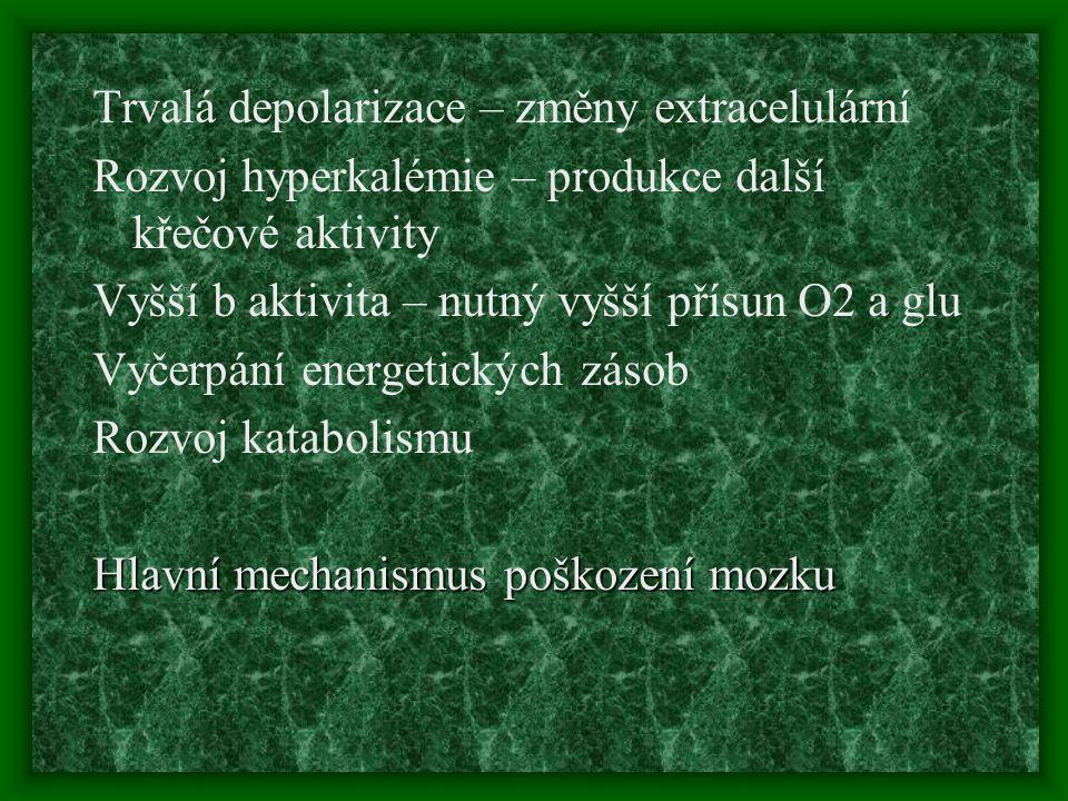 Trvalá depolarizace – změny extracelulární Rozvoj hyperkalémie – produkce další křečové aktivity Vyšší b aktivita – nutný vyšší přísun O2 a glu Vyčerp