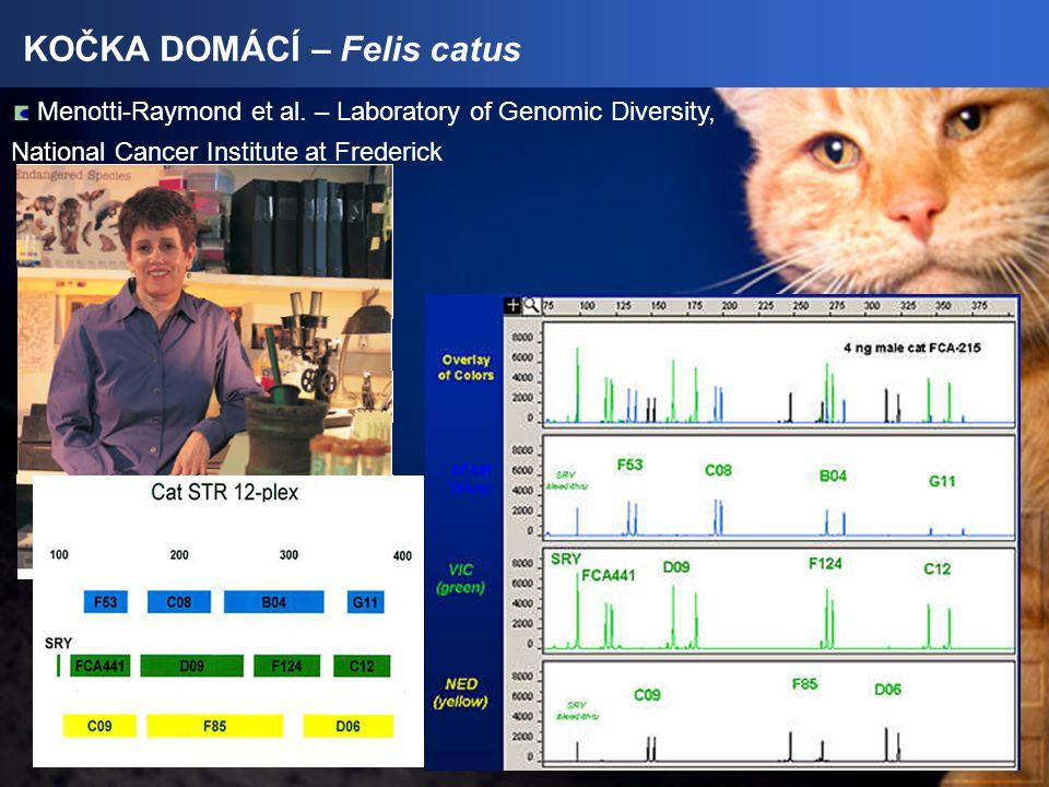 KOČKA DOMÁCÍ – Felis catus Menotti-Raymond et al.