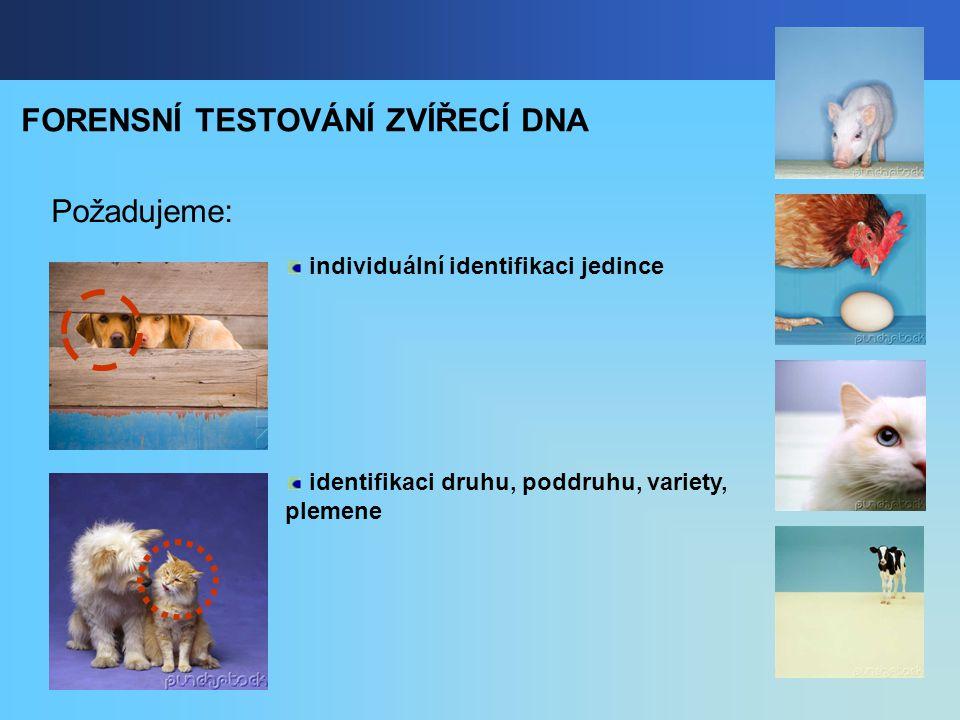 FORENSNÍ TESTOVÁNÍ ZVÍŘECÍ DNA Požadujeme: individuální identifikaci jedince identifikaci druhu, poddruhu, variety, plemene
