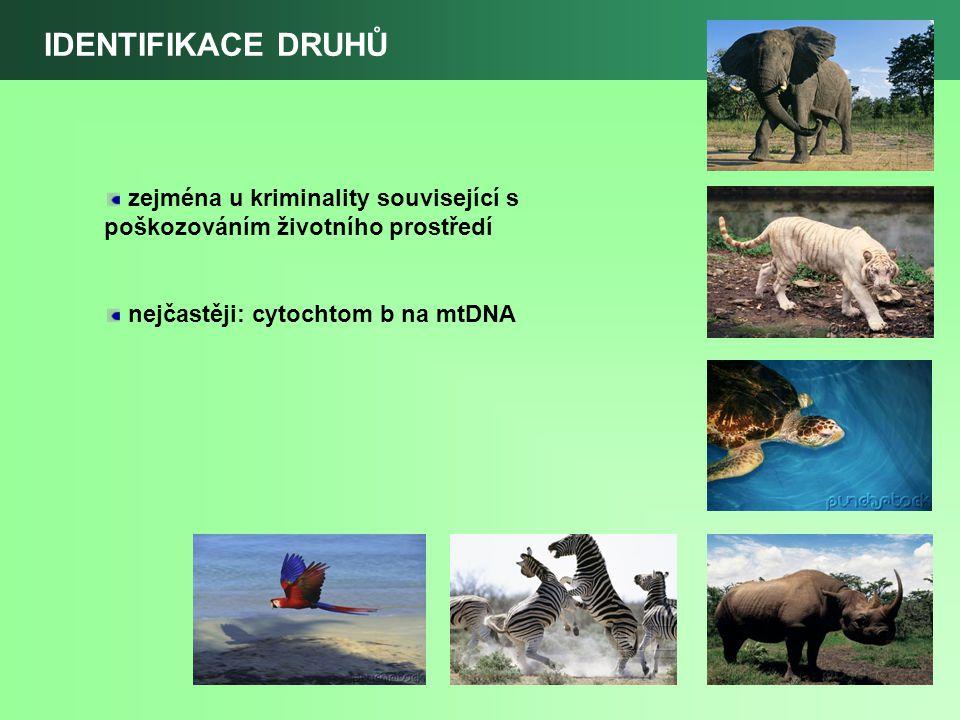 IDENTIFIKACE DRUHŮ zejména u kriminality související s poškozováním životního prostředí nejčastěji: cytochtom b na mtDNA
