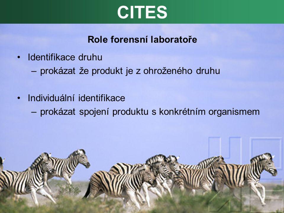 Role forensní laboratoře Identifikace druhu –prokázat že produkt je z ohroženého druhu Individuální identifikace –prokázat spojení produktu s konkrétním organismem