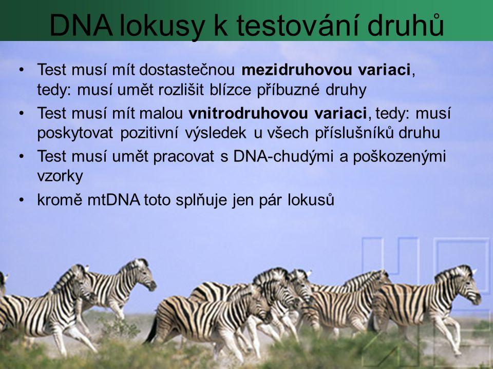 DNA lokusy k testování druhů Test musí mít dostastečnou mezidruhovou variaci, tedy: musí umět rozlišit blízce příbuzné druhy Test musí mít malou vnitrodruhovou variaci, tedy: musí poskytovat pozitivní výsledek u všech příslušníků druhu Test musí umět pracovat s DNA-chudými a poškozenými vzorky kromě mtDNA toto splňuje jen pár lokusů