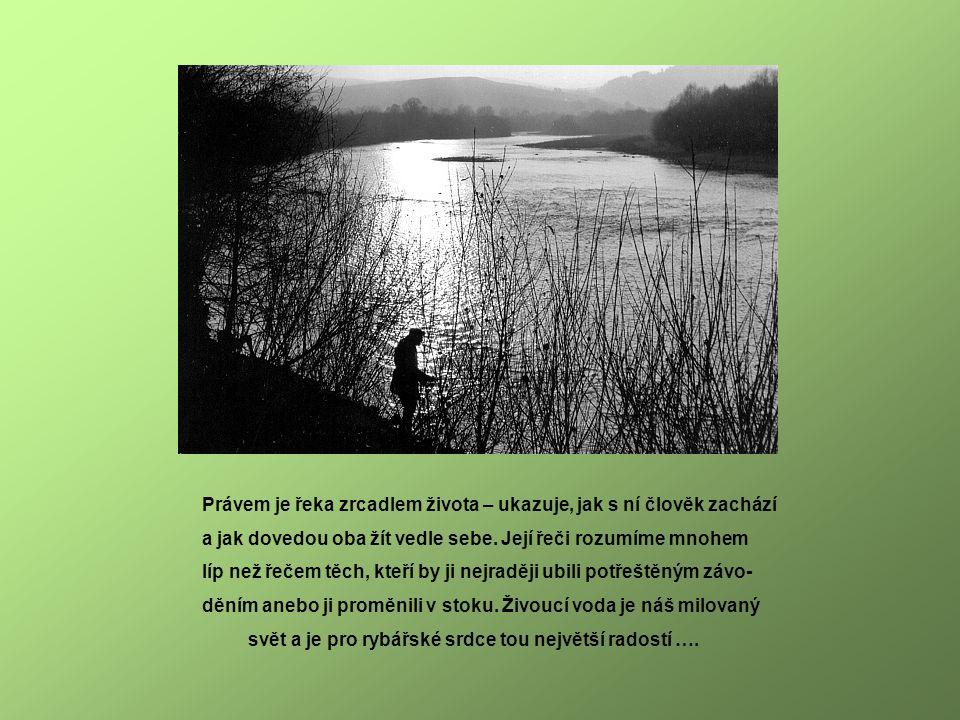 Právem je řeka zrcadlem života – ukazuje, jak s ní člověk zachází a jak dovedou oba žít vedle sebe.