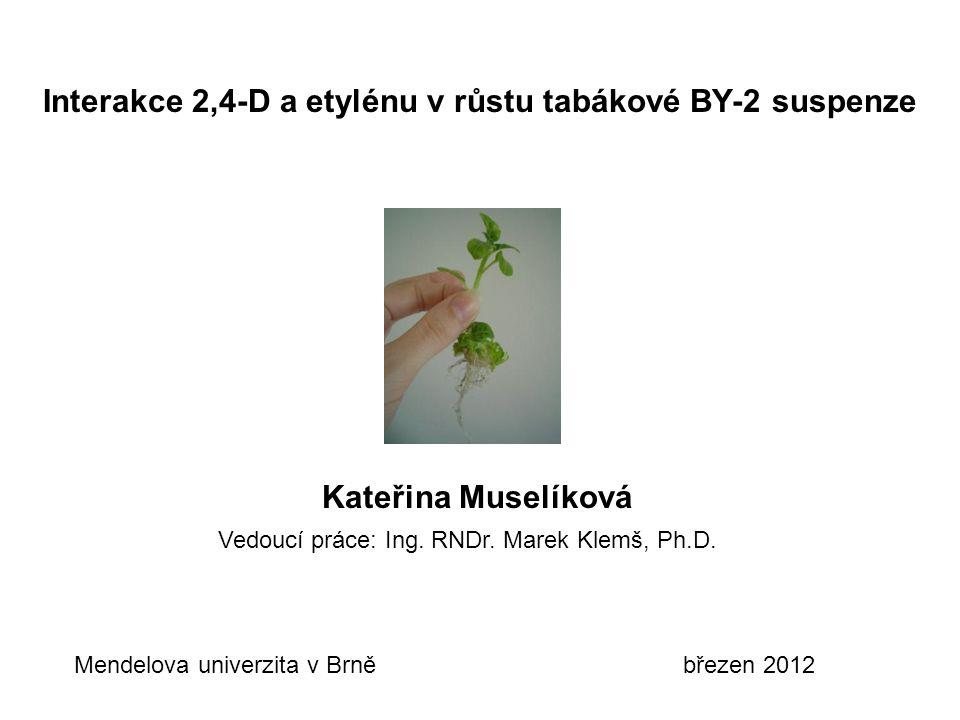 Interakce 2,4-D a etylénu v růstu tabákové BY-2 suspenze Vedoucí práce: Ing. RNDr. Marek Klemš, Ph.D. Kateřina Muselíková Mendelova univerzita v Brně