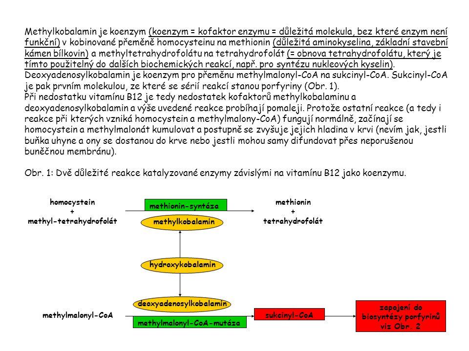 Methylkobalamin je koenzym (koenzym = kofaktor enzymu = důležitá molekula, bez které enzym není funkční) v kobinované přeměně homocysteinu na methionin (důležitá aminokyselina, základní stavební kámen bílkovin) a methyltetrahydrofolátu na tetrahydrofolát (= obnova tetrahydrofolátu, který je tímto použitelný do dalších biochemických reakcí, např.