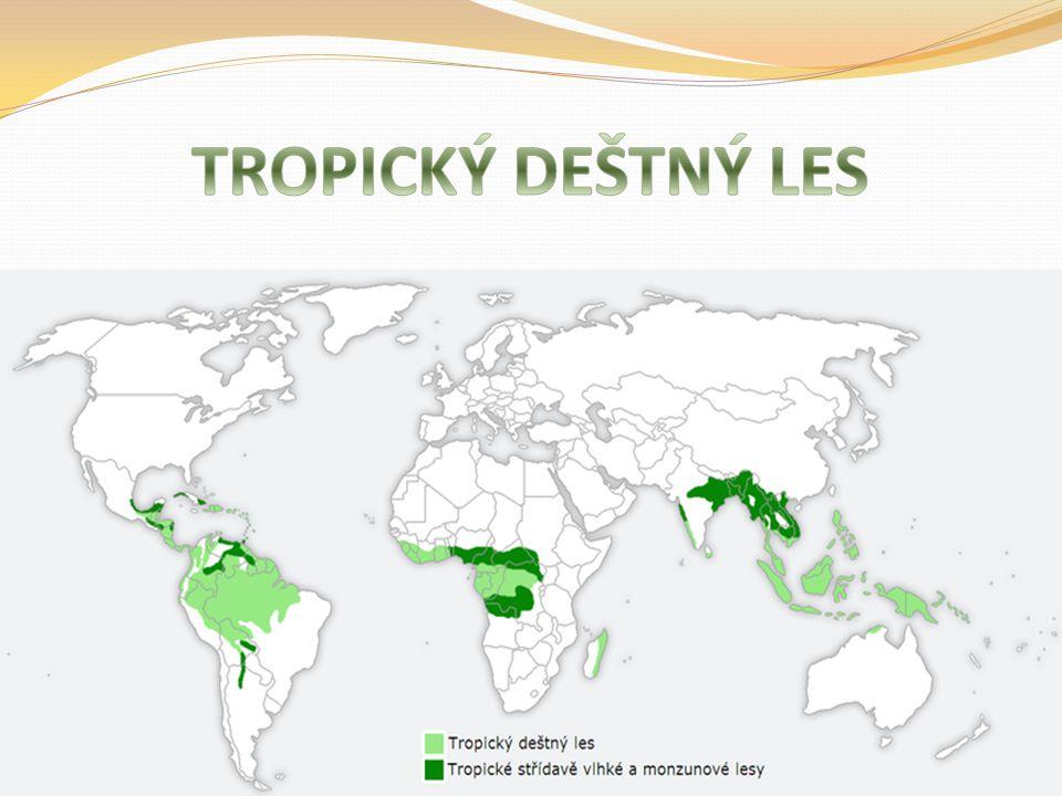 Tropické deštné lesy se nacházejí v širokém pásu kolem rovníku.