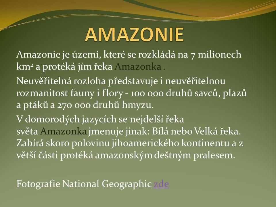 Amazonie je území, které se rozkládá na 7 milionech km 2 a protéká jím řeka Amazonka. Neuvěřitelná rozloha představuje i neuvěřitelnou rozmanitost fau