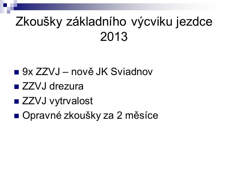 Zkoušky základního výcviku jezdce 2013 9x ZZVJ – nově JK Sviadnov ZZVJ drezura ZZVJ vytrvalost Opravné zkoušky za 2 měsíce