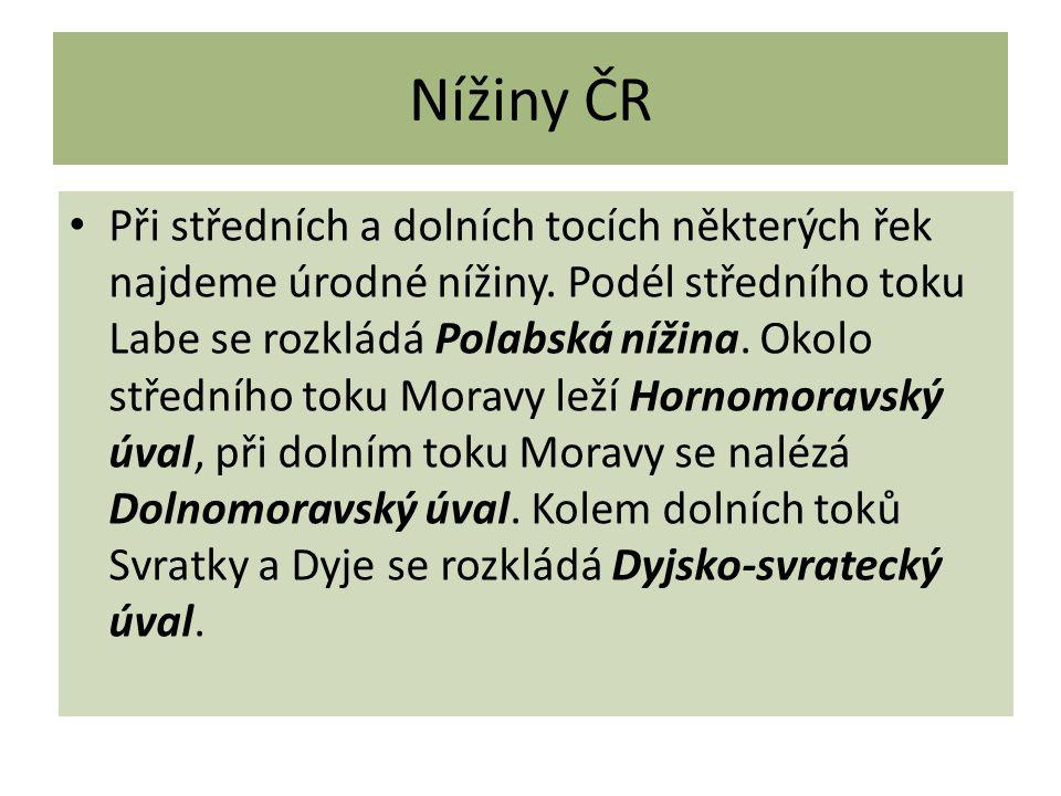 Nížiny ČR Při středních a dolních tocích některých řek najdeme úrodné nížiny.