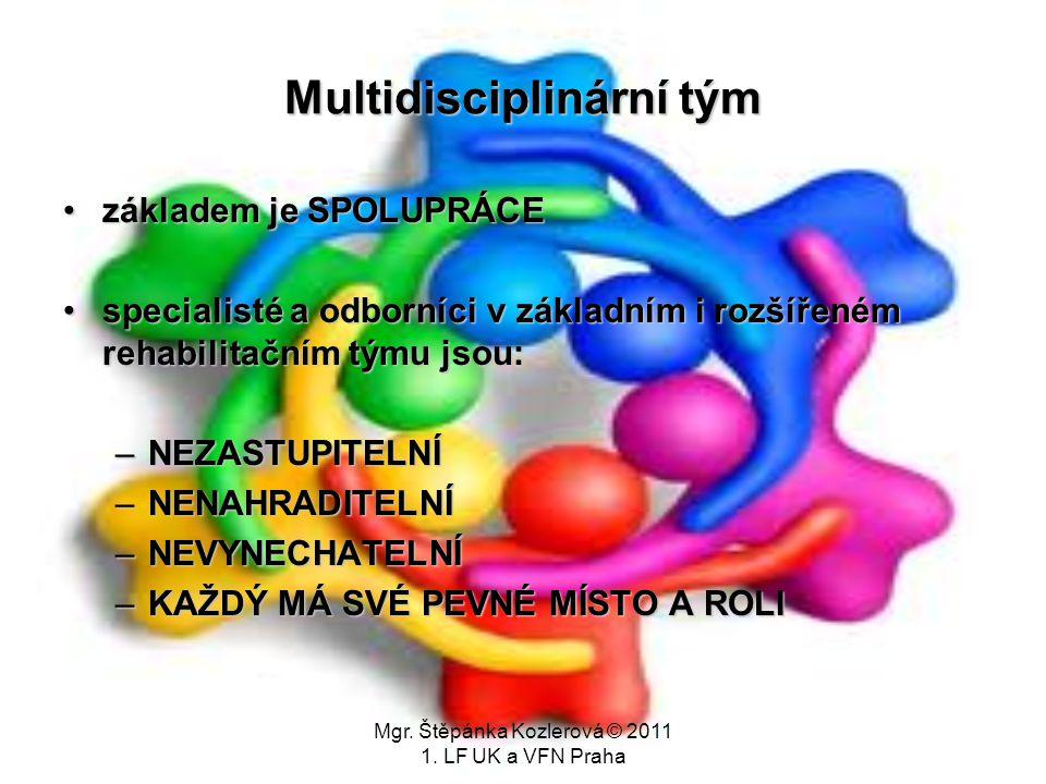 Mgr. Štěpánka Kozlerová © 2011 1. LF UK a VFN Praha Multidisciplinární tým základem je SPOLUPRÁCEzákladem je SPOLUPRÁCE specialisté a odborníci v zákl