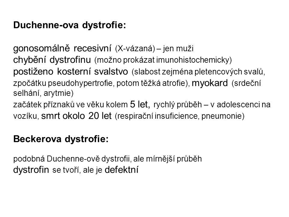 Duchenne-ova dystrofie: gonosomálně recesivní (X-vázaná) – jen muži chybění dystrofinu (možno prokázat imunohistochemicky) postiženo kosterní svalstvo
