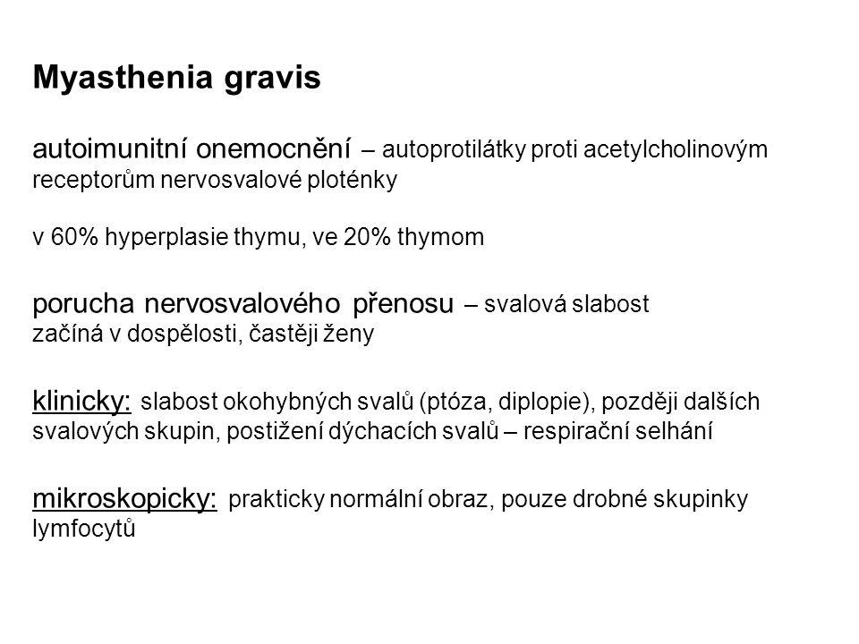 Myasthenia gravis autoimunitní onemocnění – autoprotilátky proti acetylcholinovým receptorům nervosvalové ploténky v 60% hyperplasie thymu, ve 20% thy