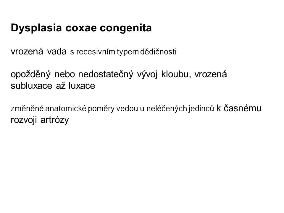 Dysplasia coxae congenita vrozená vada s recesivním typem dědičnosti opožděný nebo nedostatečný vývoj kloubu, vrozená subluxace až luxace změněné anat