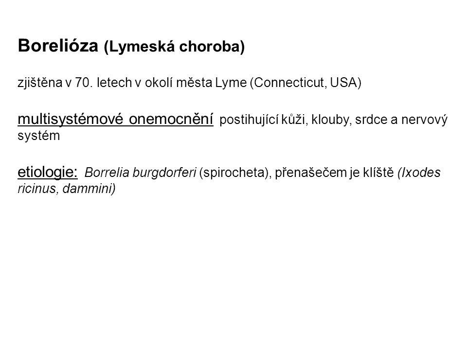 Borelióza (Lymeská choroba) zjištěna v 70. letech v okolí města Lyme (Connecticut, USA) multisystémové onemocnění postihující kůži, klouby, srdce a ne