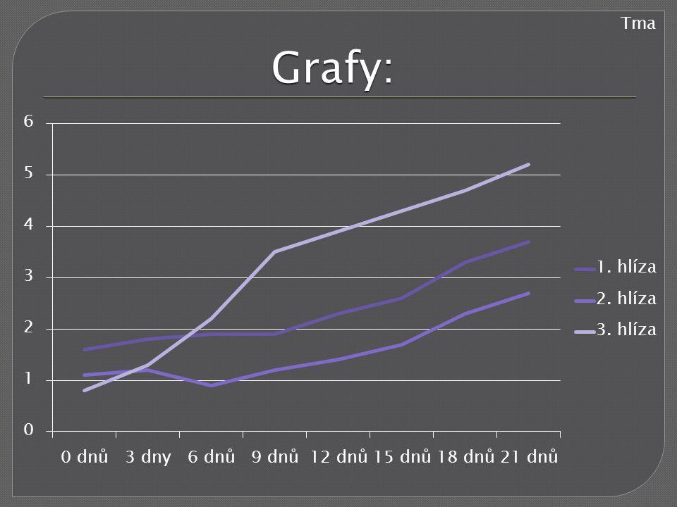 Tma Grafy:
