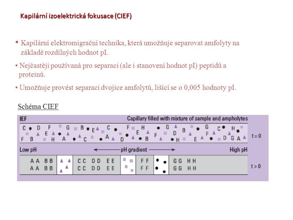Kapilární izoelektrická fokusace (CIEF) Kapilární elektromigrační technika, která umožňuje separovat amfolyty na základě rozdílných hodnot pI. Nejčast