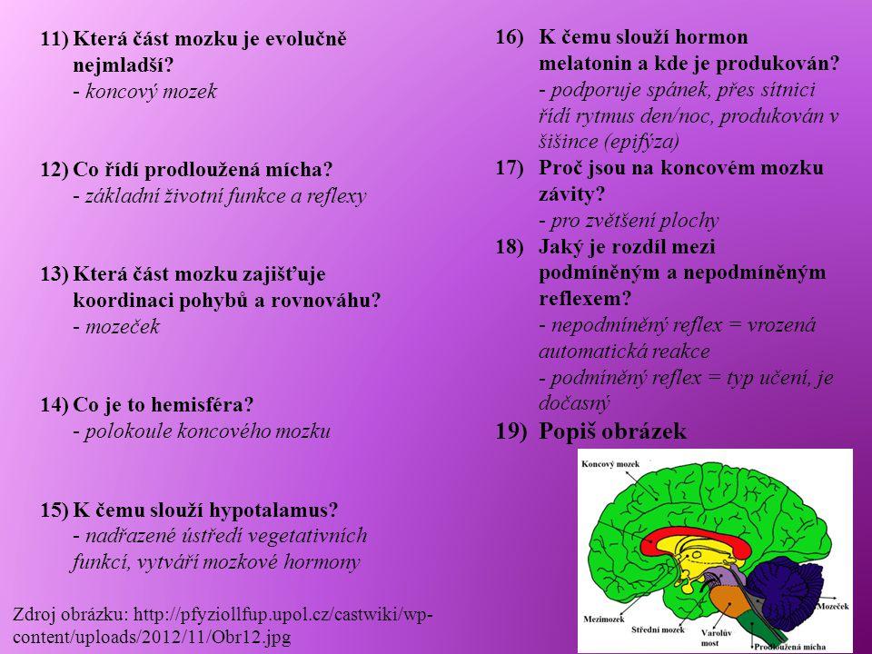 11)Která část mozku je evolučně nejmladší? - koncový mozek 12)Co řídí prodloužená mícha? - základní životní funkce a reflexy 13)Která část mozku zajiš