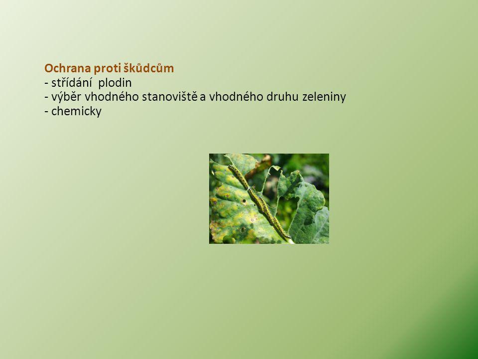 Ochrana proti škůdcům - střídání plodin - výběr vhodného stanoviště a vhodného druhu zeleniny - chemicky