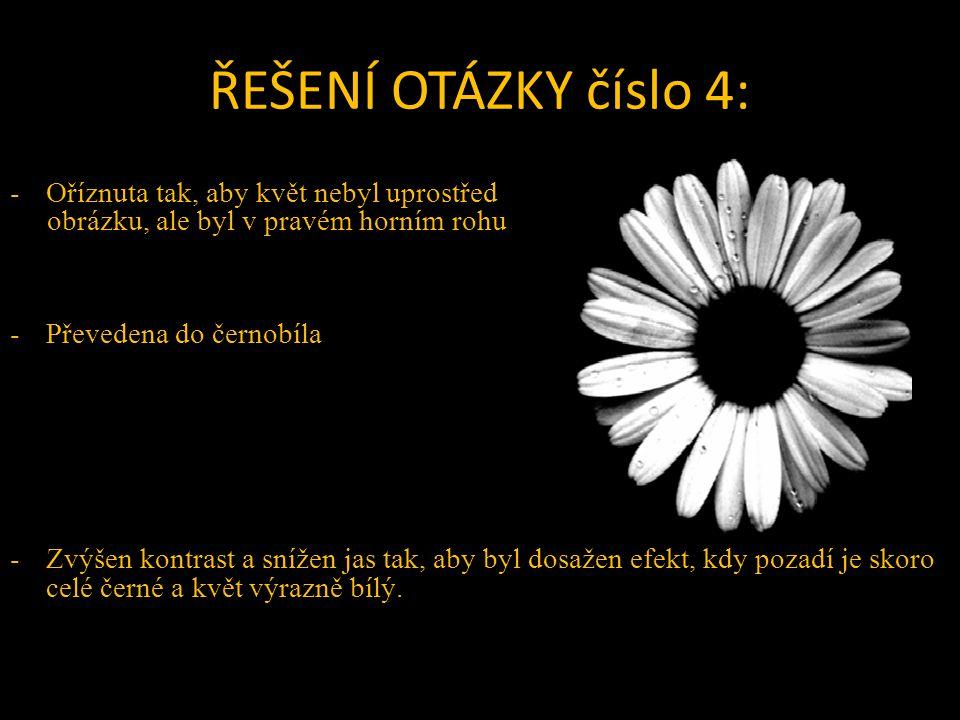 ŘEŠENÍ OTÁZKY číslo 4: -Oříznuta tak, aby květ nebyl uprostřed obrázku, ale byl v pravém horním rohu -Převedena do černobíla -Zvýšen kontrast a snížen