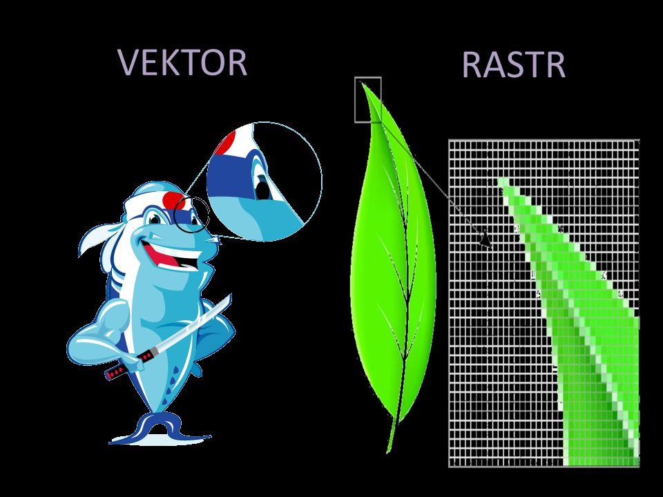 VEKTOR RASTR
