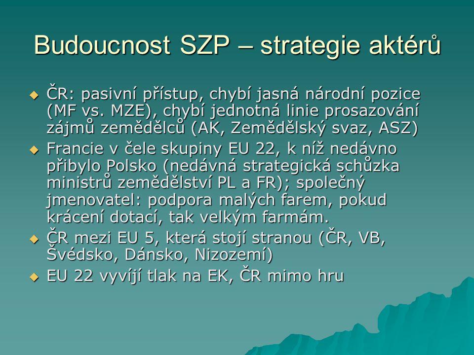 Budoucnost SZP – strategie aktérů  ČR: pasivní přístup, chybí jasná národní pozice (MF vs.