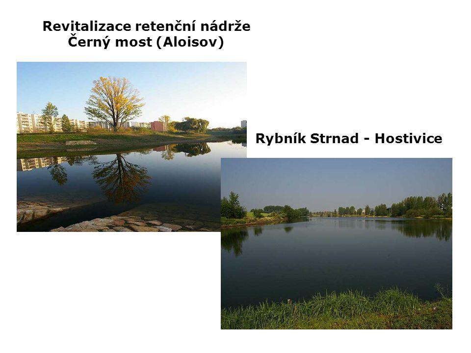 Revitalizace retenční nádrže Černý most (Aloisov) Rybník Strnad - Hostivice