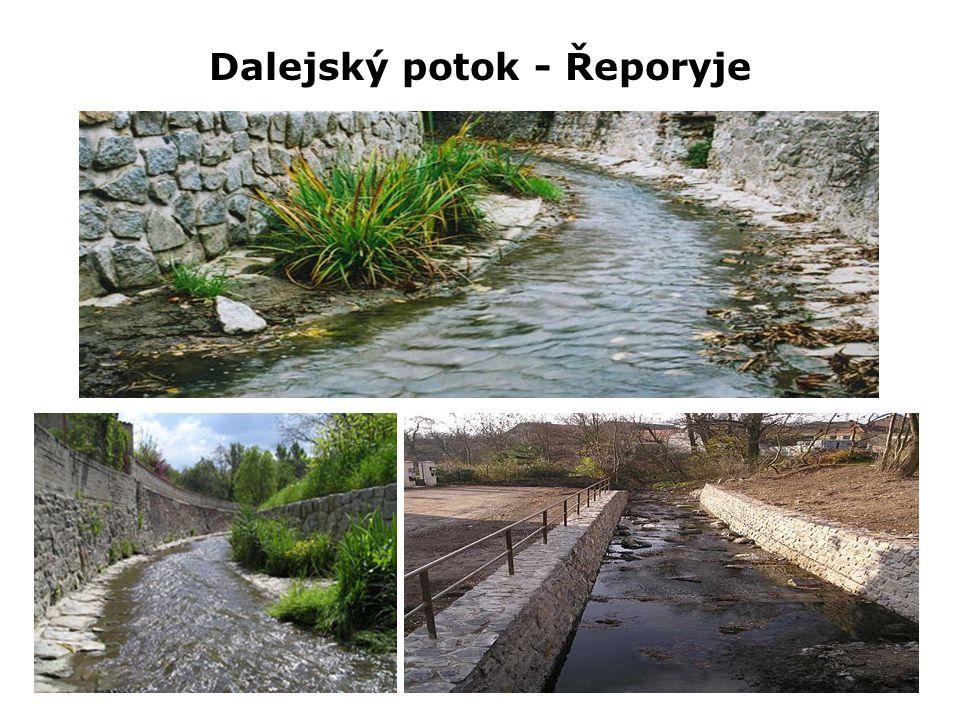 Dalejský potok - Řeporyje
