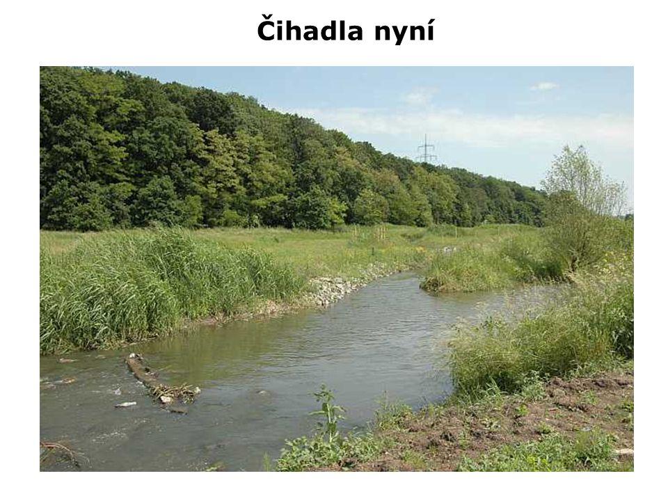 Čihadla – Svépravický potok (ukončení revitalizace) Čihadla – tůň (ukončení revitalizace)