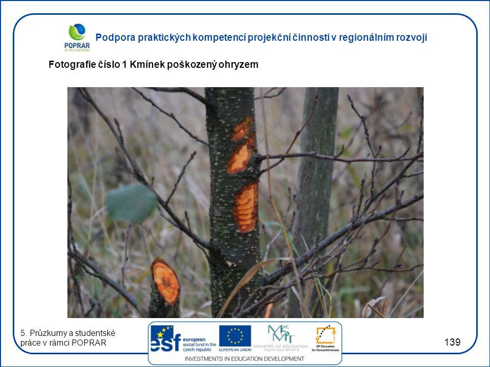 Podpora praktických kompetencí projekční činnosti v regionálním rozvoji 139 Fotografie číslo 1 Kmínek poškozený ohryzem 5.