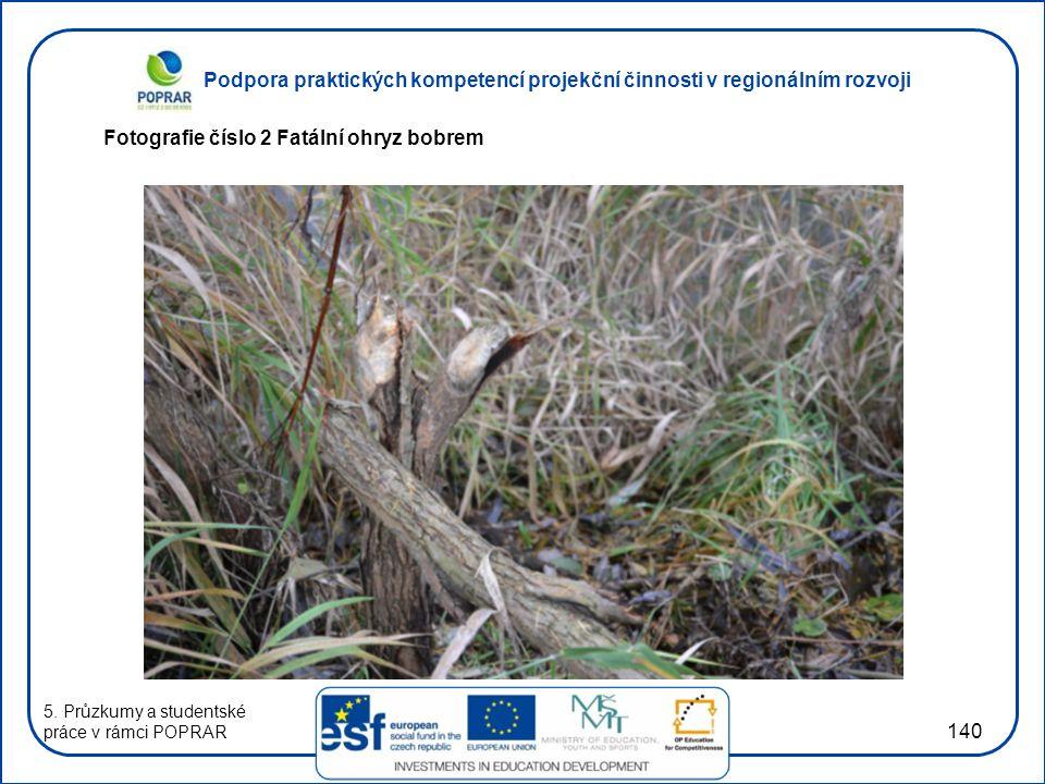 Podpora praktických kompetencí projekční činnosti v regionálním rozvoji 140 Fotografie číslo 2 Fatální ohryz bobrem 5.