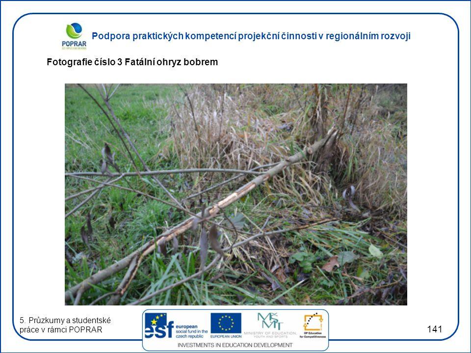 Podpora praktických kompetencí projekční činnosti v regionálním rozvoji 141 Fotografie číslo 3 Fatální ohryz bobrem 5.