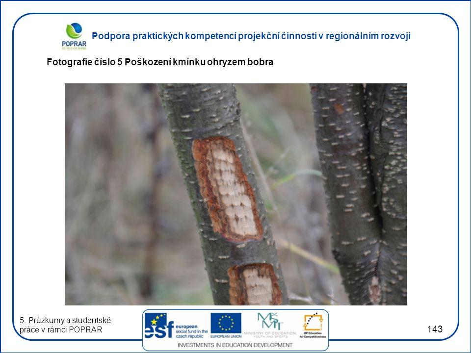 Podpora praktických kompetencí projekční činnosti v regionálním rozvoji 143 Fotografie číslo 5 Poškození kmínku ohryzem bobra 5. Průzkumy a studentské